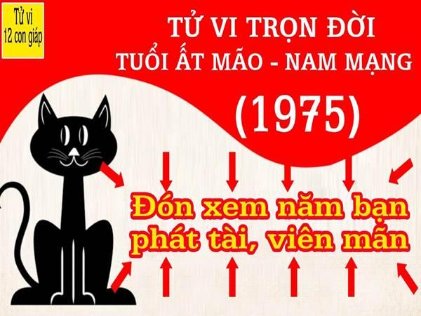 at-mao-xem-tu-vi-tron-doi-tuoi-at-mao-nam-mang