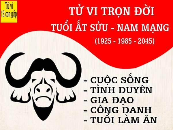 at-suu-xem-tu-vi-tron-doi-tuoi-at-suu-nam-mang