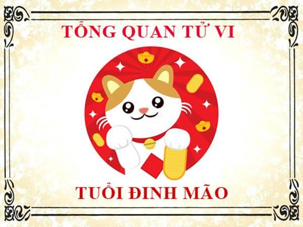 dinh-mao-xem-tu-vi-tron-doi-tuoi-dinh-mao