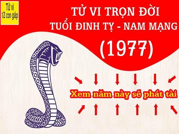 dinh-ty-xem-tu-vi-tron-doi-tuoi-dinh-ty-nam-mang