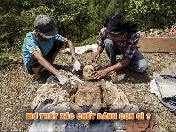 Chiêm bao thấy xác chết nên đánh con gì?