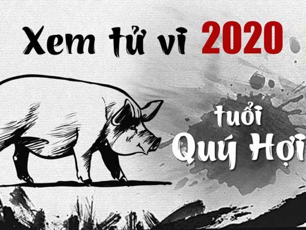 Xem bói tử vi tuổi Quý Hợi năm 2020