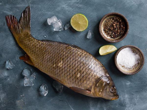 Mơ thấy cá trắm là điềm gì? Đánh con gì nhanh đổi đời nhất?