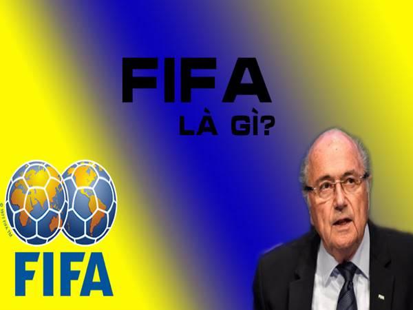 FIFA là gì? những điều có thể bạn chưa biết về tổ chức này