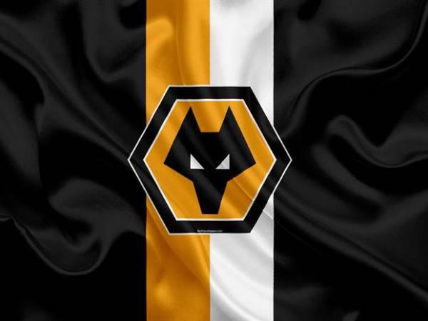 Ý nghĩa Wolves logo và những thông tin về Wolverhampton